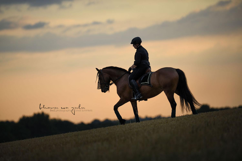 Pferdefotografie Ratingen