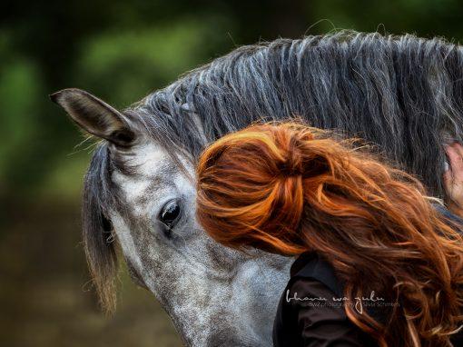 | emotionale Tier-Mensch Bindung (Pferd)
