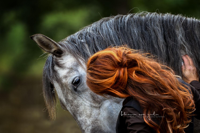 Pferdefotografie, Emotionen by BwZ