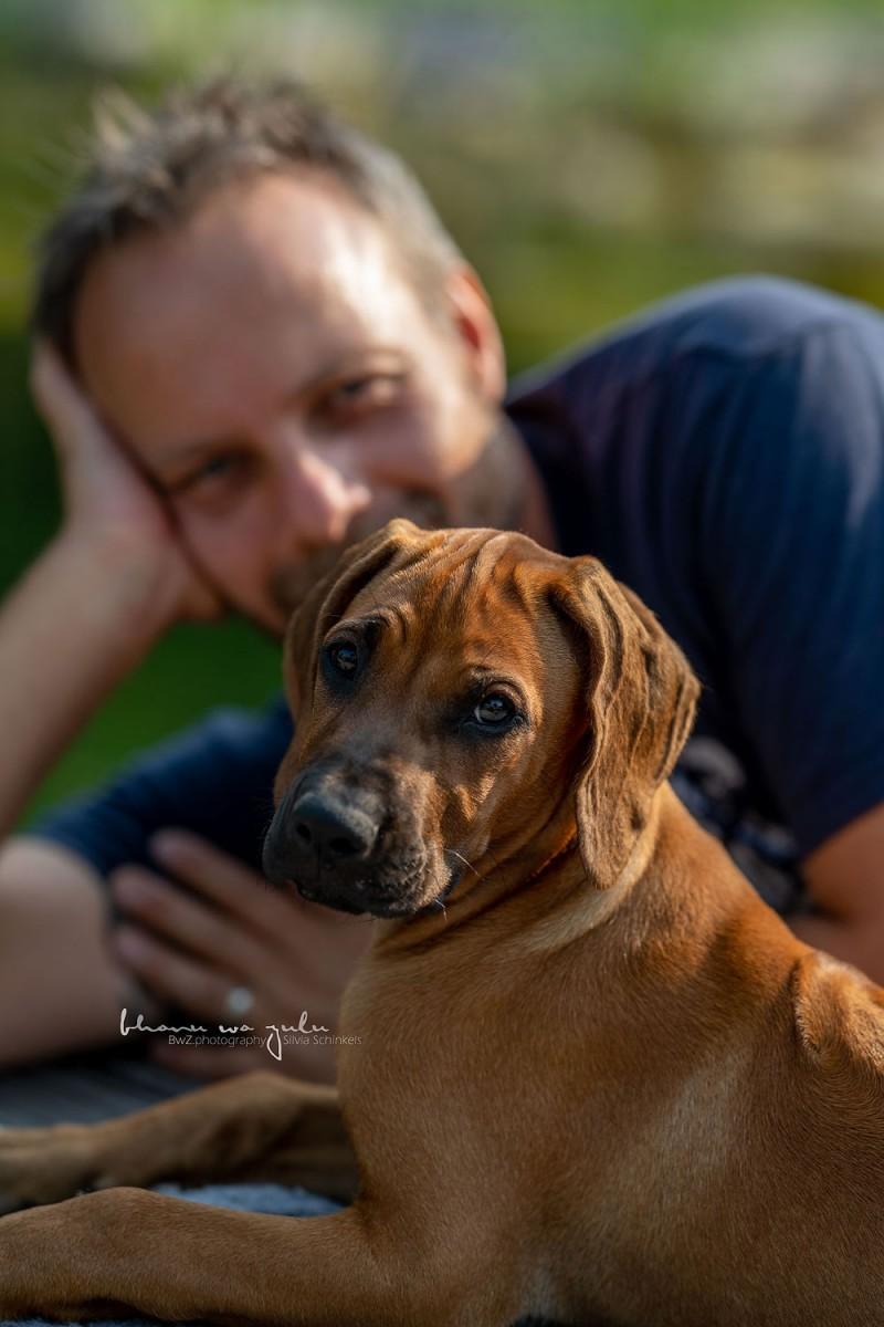 Beispielbilder Hundefotos Oni
