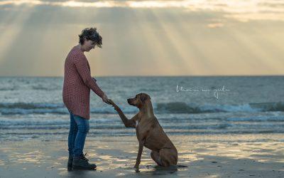 |Strandpfoten | Sandhufe 2019