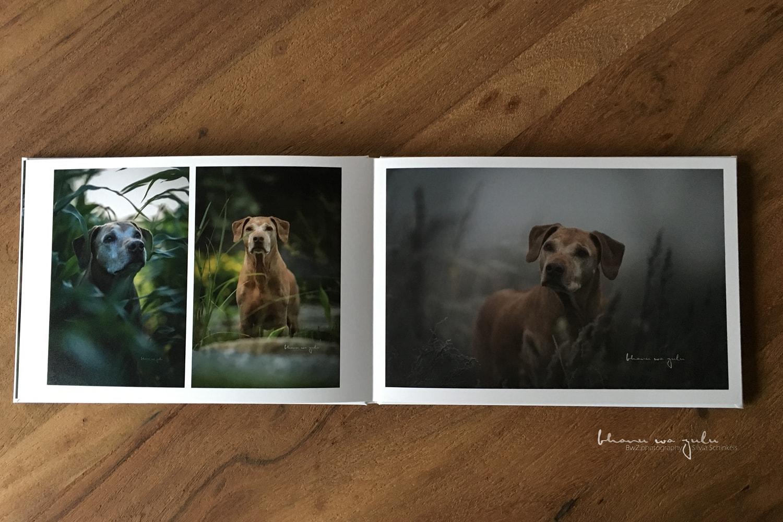 BwZ.photography Fotobuch