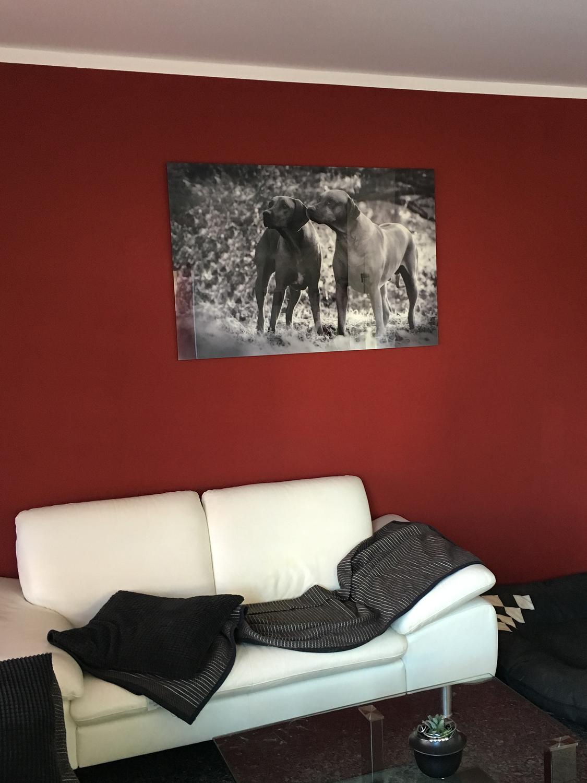 Wandbild an der Wand