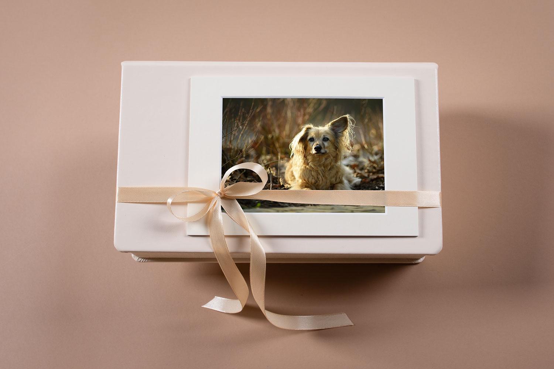Produkt Fotobox